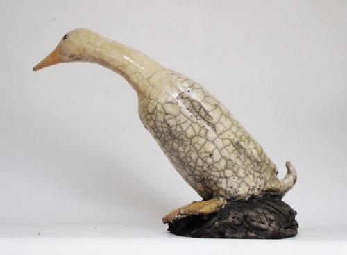 Canard coureur Indien 220