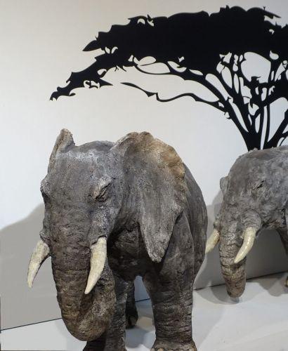 Elephants 1