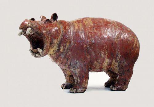 Hippo 306