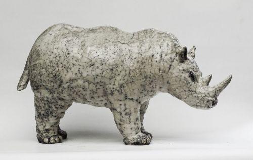 Rhino 167